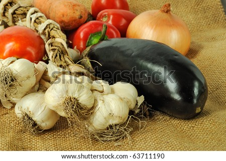 Group of fresh vegetables on canvas background - stock photo