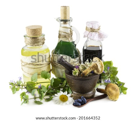Group of glass bottle with healing herbs, mushrooms and berries, homeopathic still life isolated on white - stock photo
