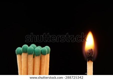 Group of green wooden matches standing with burning match, isolated on black background - stock photo
