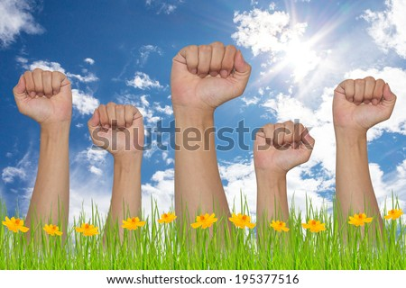 Group of hand and fist lift up high - stock photo