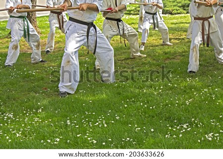 Group of men taekwondo with sticks performs in the park  - stock photo
