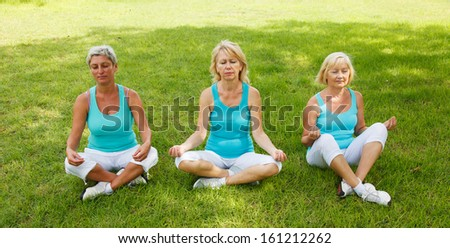 Group of People practicing yoga outside - stock photo