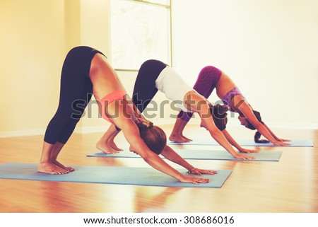 Group of People Relaxing and Doing Yoga. Practicing Downward Dog. Wellness and Healthy Lifestyle.  - stock photo