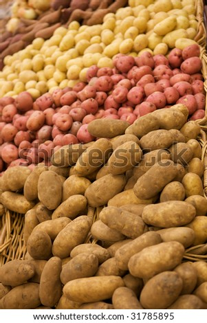 Group of Potatoes - stock photo
