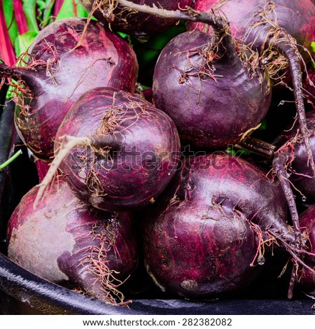 Group of Red beets in a supermarket at Colfax, Whitman County, Washington, USA. Full frame close up of Red beets. - stock photo