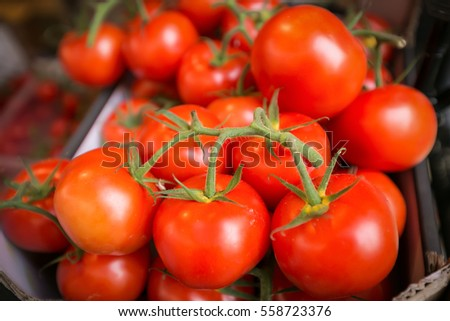 Group of red tomatoes