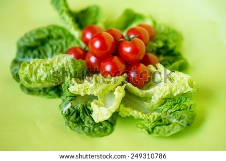 Group of small bio tomatoes on a bed of lettuce on fresh light green background - stock photo