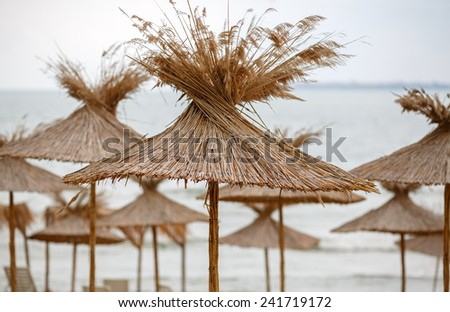 Group of straw umbrellas on the Black Sea in Bulgaria. Shallow depth of field. - stock photo