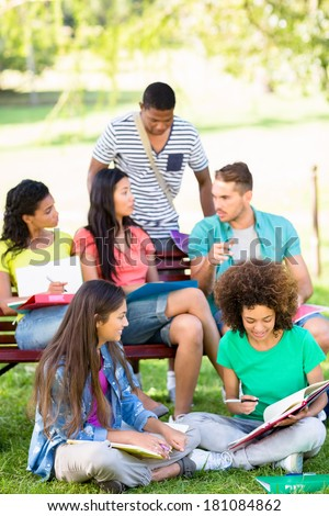 Group of university students studying on college campus - stock photo