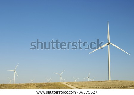group of windmills with blue sky