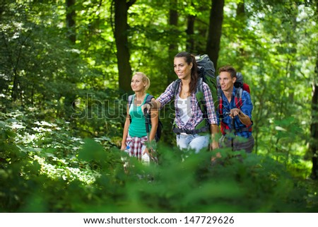 Group of young hikers  on a trail in the mountains on a summer day - stock photo
