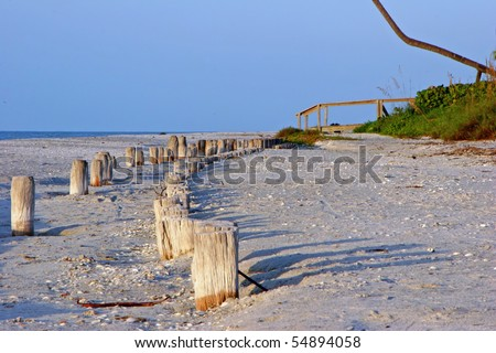Group Wood Piling on beach Sanibel Florida - stock photo