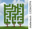Growing challenges as a business concept of future complicated financial risks ahead with a group of trees shaped as a maze or labyrinth on a summer sky. - stock photo