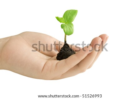 growing in hand