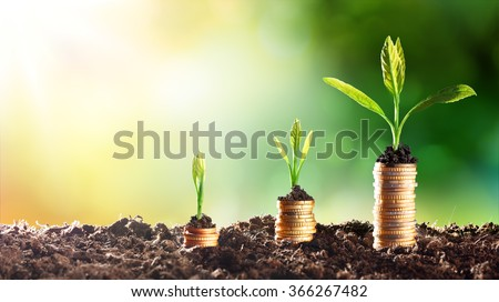 Growing Money - Chart In Rise  - stock photo