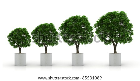 growing plants isolated on white