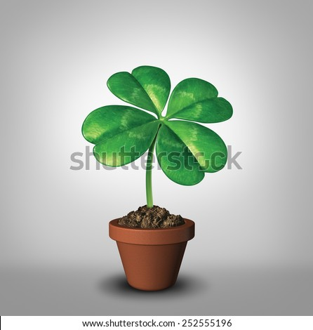 Growing your luck as a four leaf clover plant in a flower pot as a symbol for success and prosperity as a green lucky charm icon of good luck and fortune for opportunity and healthy growth. - stock photo