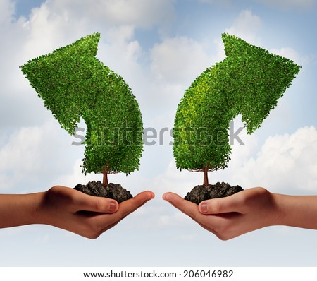 Growth choice and business guidance concept as two human hands holding up trees shaped as an arrow growing in opposite directions as a crossroad metaphor for choosing the right option for success. - stock photo