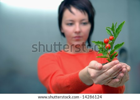 growth concept with small plant in hand - stock photo