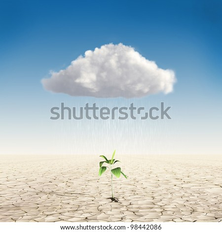 Growth investing and financial business success in the form of a small green tree in the desert, which sheds rain from the cloud - stock photo