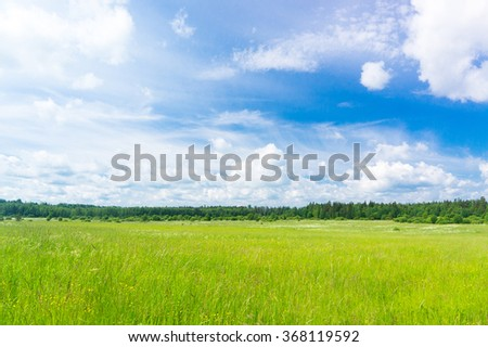 Growth Season Plain Nature  - stock photo