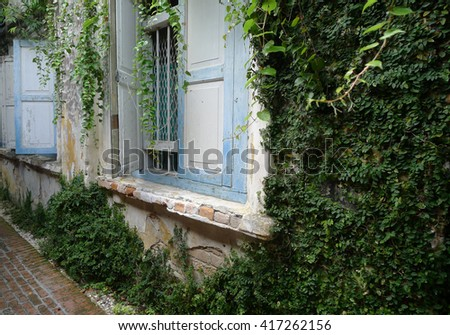 Grunge Aged House, covered by ivy - stock photo