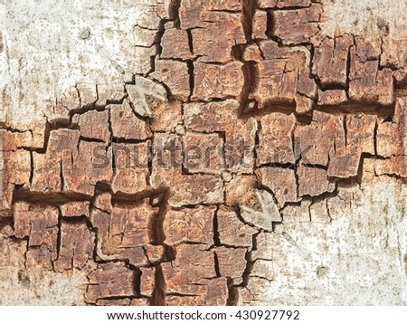 grunge and crack tree texture background