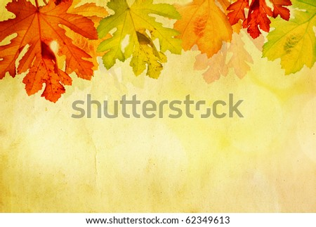Grunge background with autumn leaves and copy space - stock photo