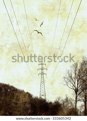 Grunge background with illustration  - stock photo