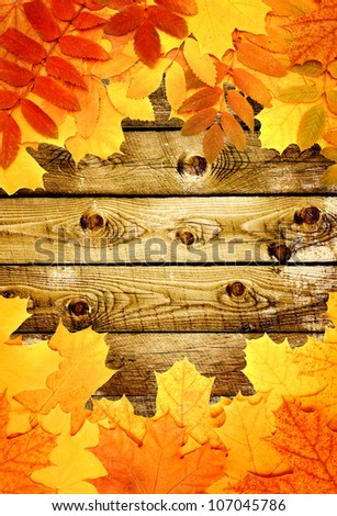 Grunge background with wooden planks autumn leaves - stock photo