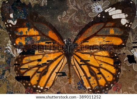 grunge butterfly  - stock photo