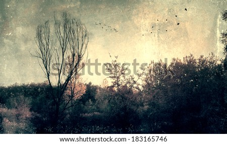 Grunge effected photo of spooky dark forest - stock photo