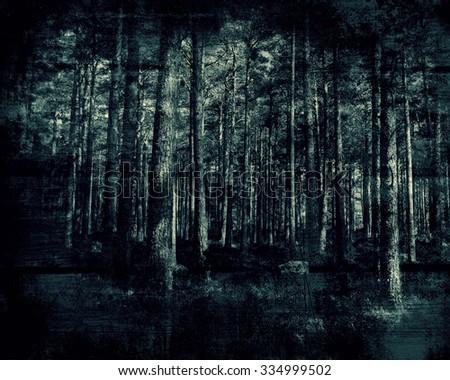 Grunge Forest, Beautiful Dark Landscape  - stock photo