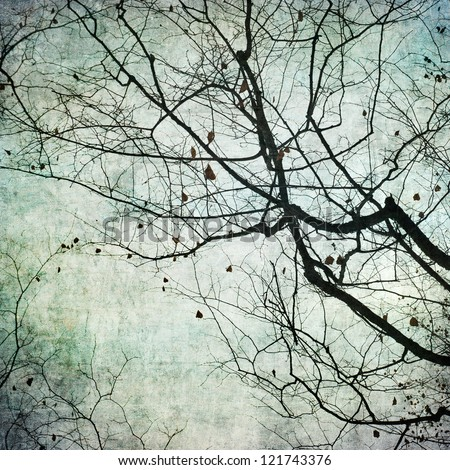 grunge frame with tree silhouettes - stock photo