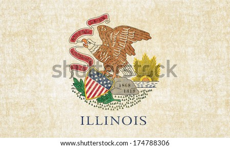 Grunge Illinois state Flag - stock photo