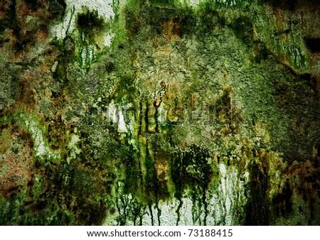 grunge moss on wall - stock photo