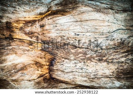 Grunge Old wood cracked texture background