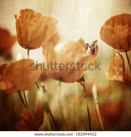 Grunge photo of beautiful red poppy flowers field, abstract floral pattern, vintage style image, natural wallpaper, fine art - stock photo