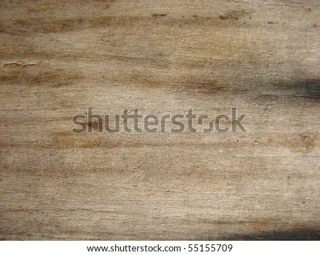 Grunge Timber Textures - stock photo