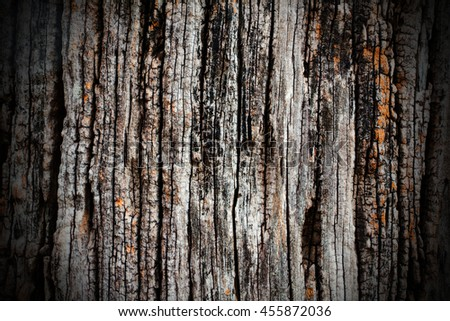Grunge Wood Background Texture