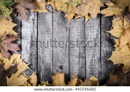 Grunge wooden natural background with yellow maple leaves and space for text - stock photo