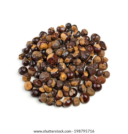 Guarana seeds isolated on white background photographed with studio lighting - stock photo
