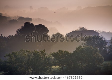 Guardistallo, Tuscany, Italy, view from the hill of Ricrio, landscape on the fog