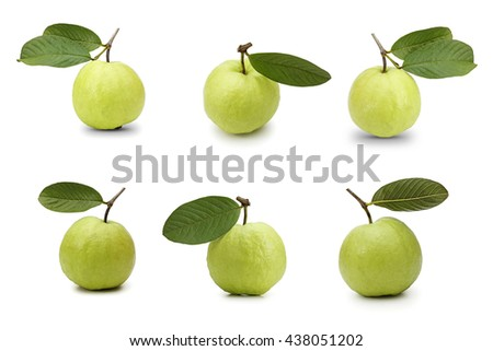 Guava fruits isolated on white background - stock photo