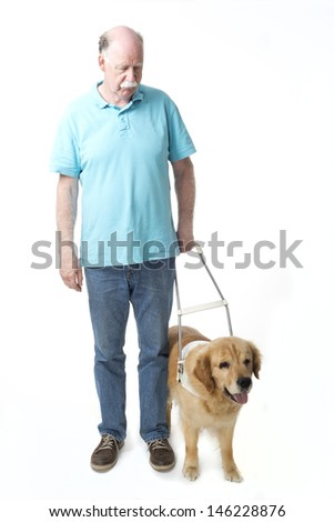 Guide dog and blind man isolated on white - stock photo
