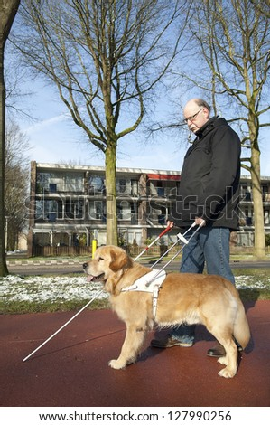 Guide dog is helping blind man - stock photo