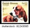 GUINEA-BISSAU - CIRCA 1988: A stamp printed in the Republic of Guinea-Bissau shows Basset dog, circa 1988 - stock photo