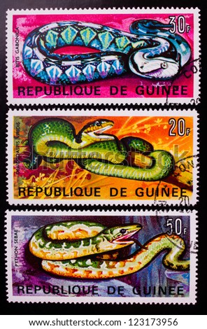 GUINEA - CIRCA 1967: A stamp printed in Guinea shows three kinds of colourful python snakes , circa 1967. - stock photo