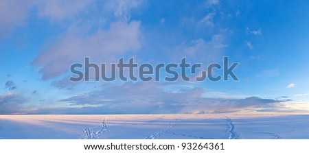 Gulf of Finland in sunny winter day, panorama - stock photo