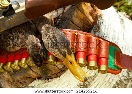 Gun, duck and hunting ammunition on a wooden stump - stock photo